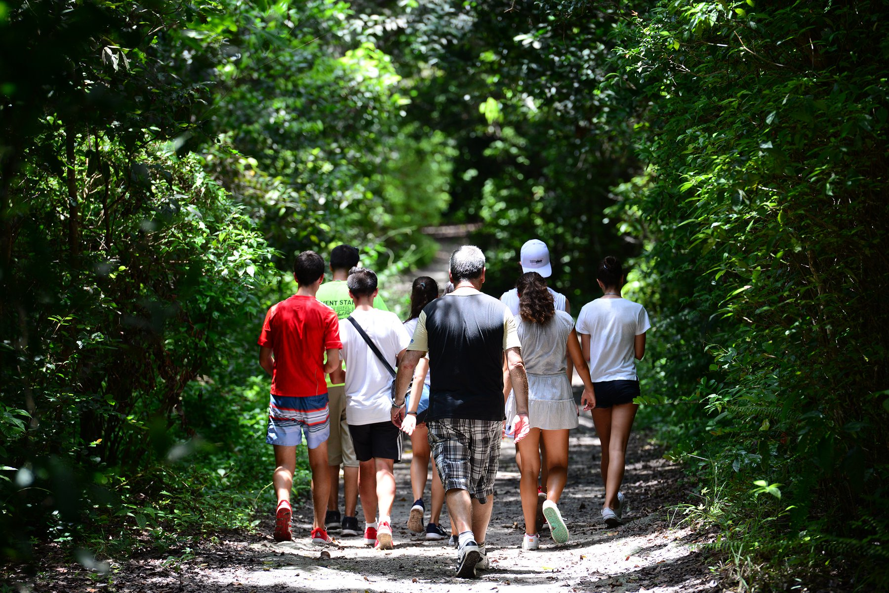Guests on a private group hike through the natural areas of the park