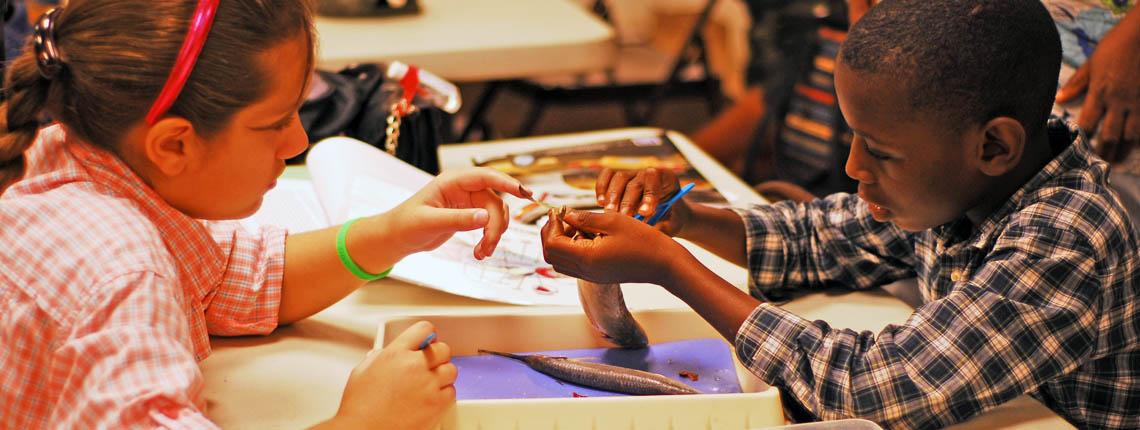 Deering Estate Learning Classroom eco academy homeschool