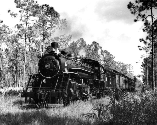 Henry Flagler's Florida East Coast Railway company spurred extensive development throughout South Florida by the turn-of-the-century