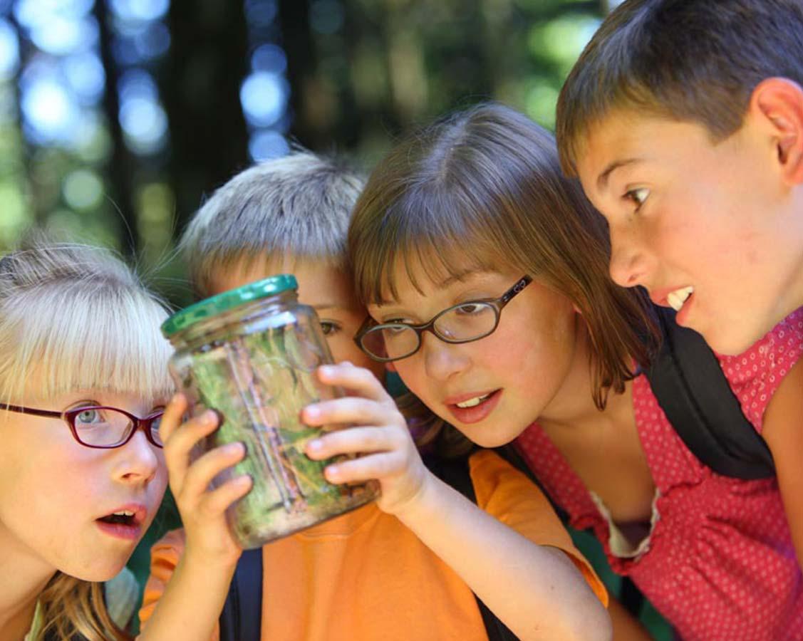 Junior Naturalist at The Deering Estate
