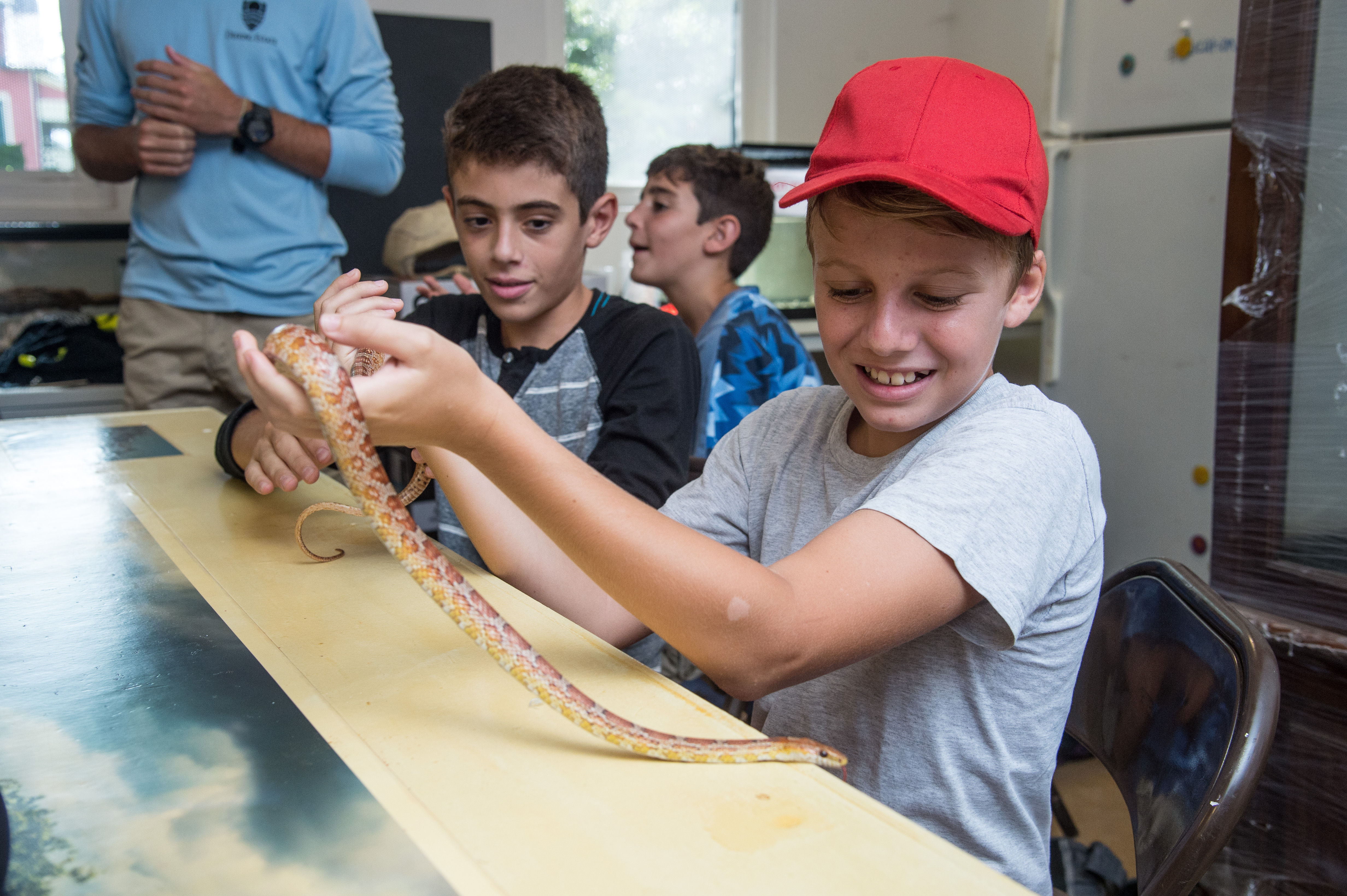 Dissections at The Deering Estate