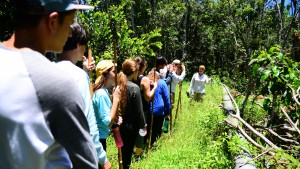 deering estate junior naturalists hiking through the tropical hardwood hammock nature preserve