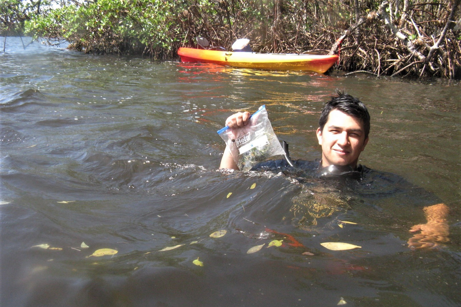 an intern taking a break from kayaking to go for a swim in the waters of biscayne bay