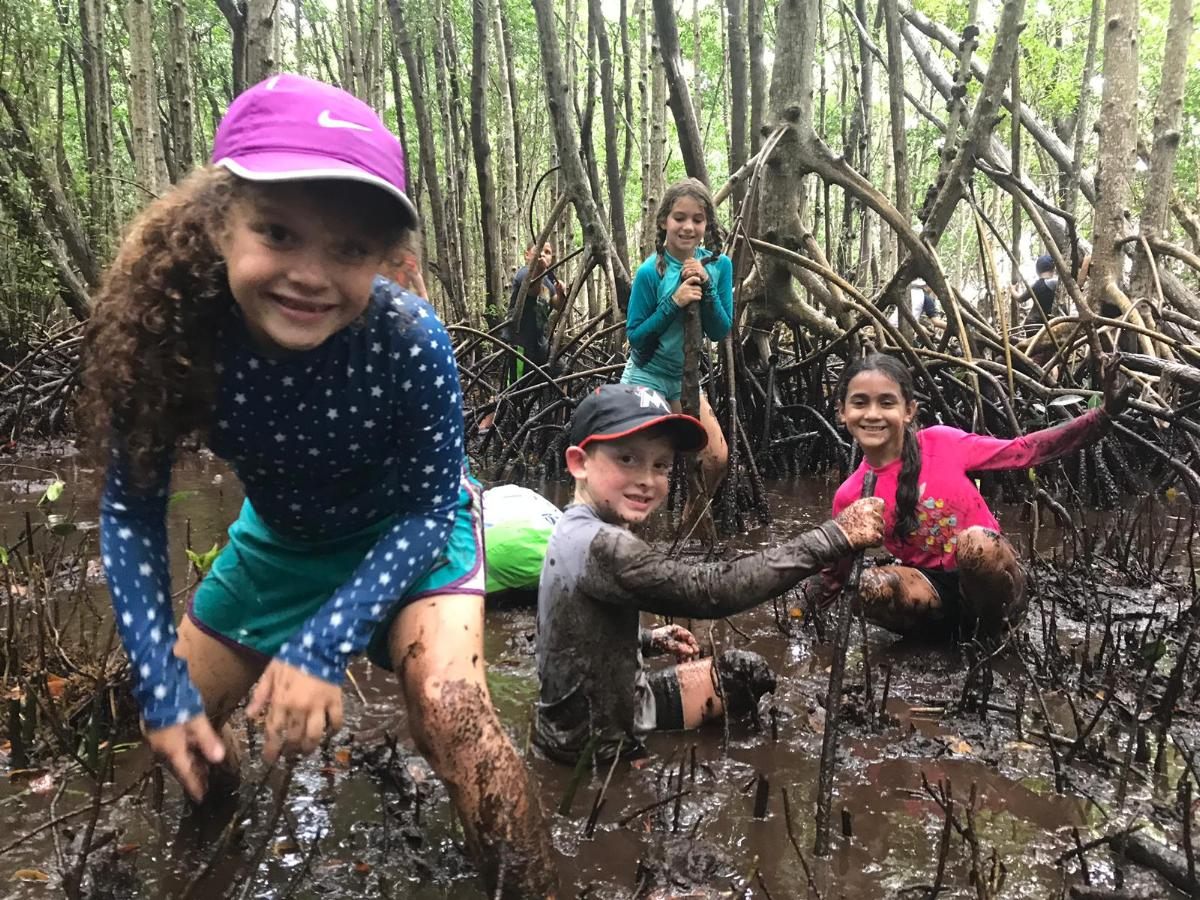 summer campers on a muddy mangrove hike