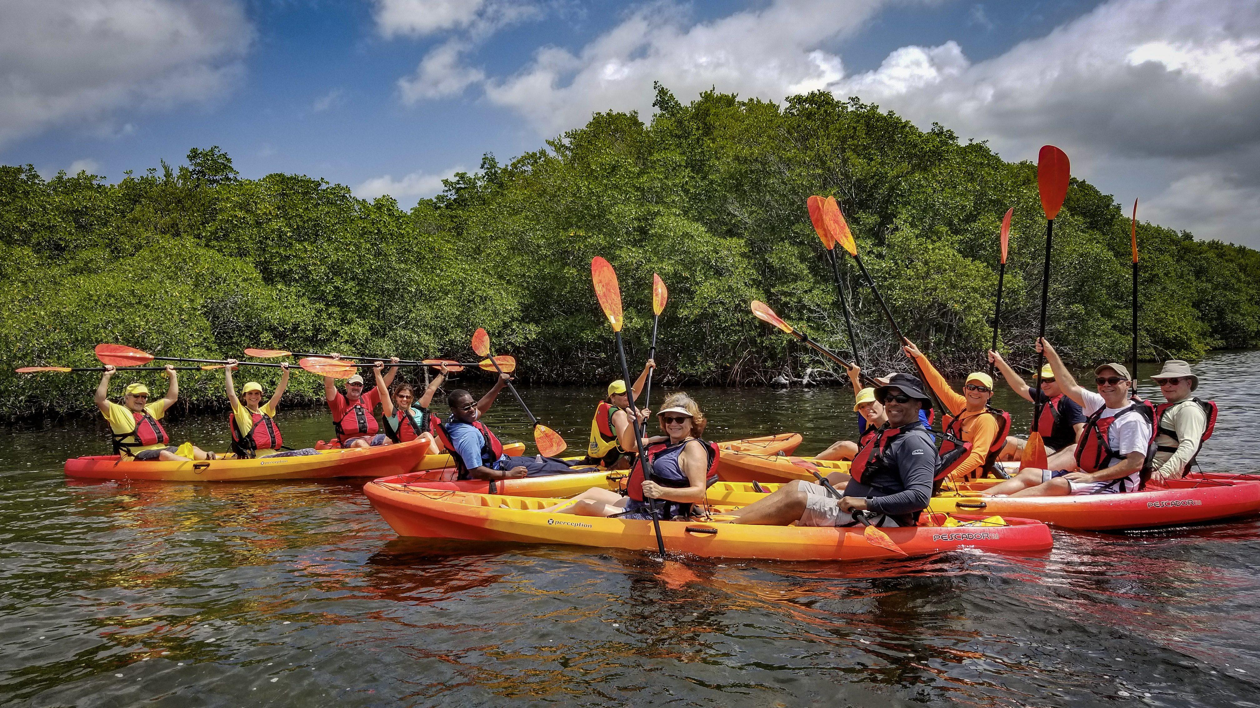 Group of kayakers kayaking through the mangroves by Deering Estate