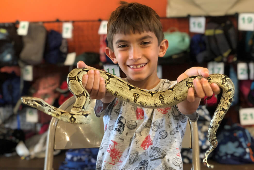 Child holding live snake through interactive field trip at The Deering Estate.