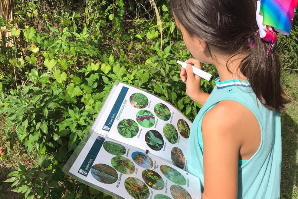 Child learning about ethnobotany on field trip at The Deering Estate.