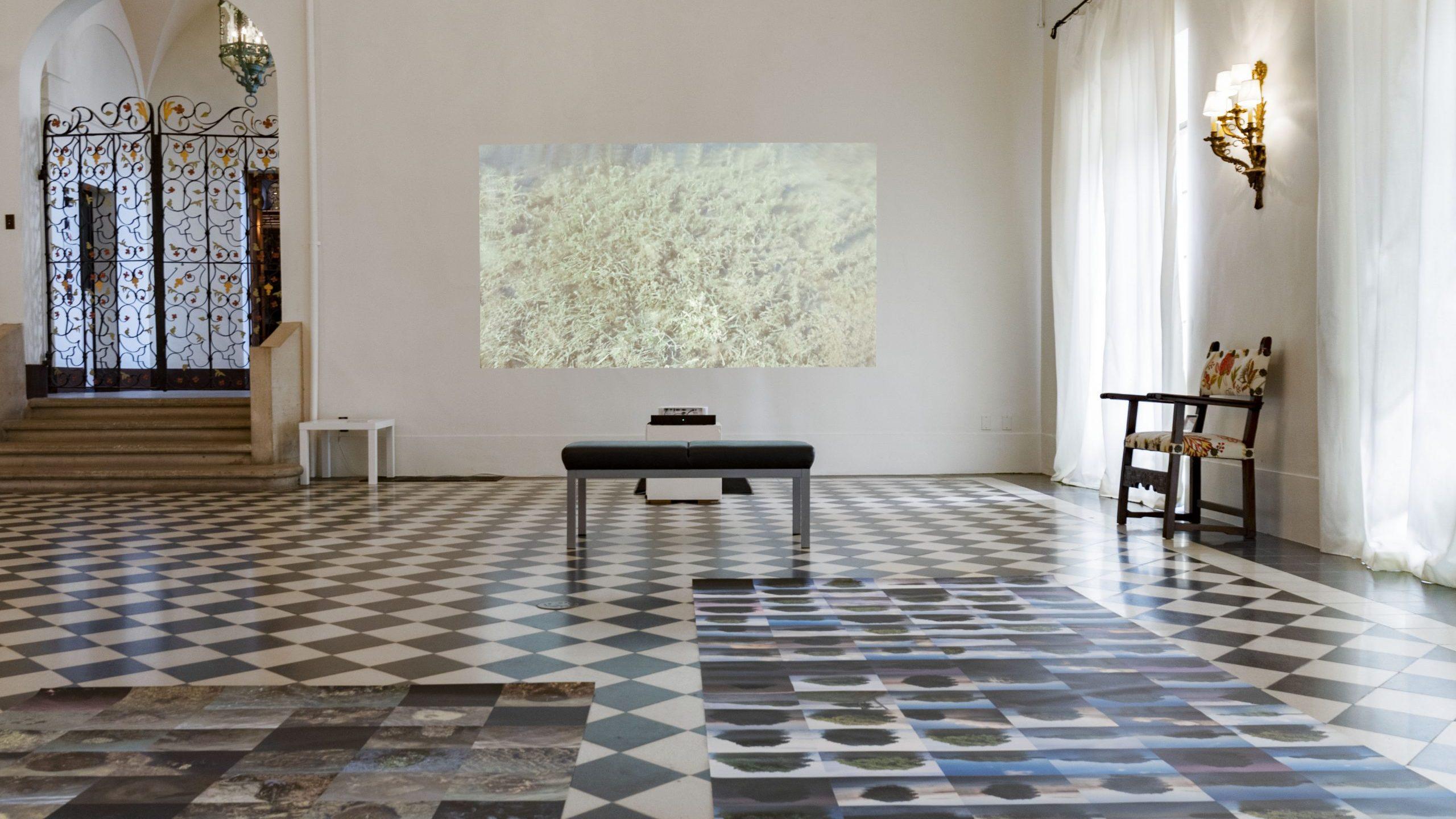 Amalia Caputo Art Gallery Inside the Stone House