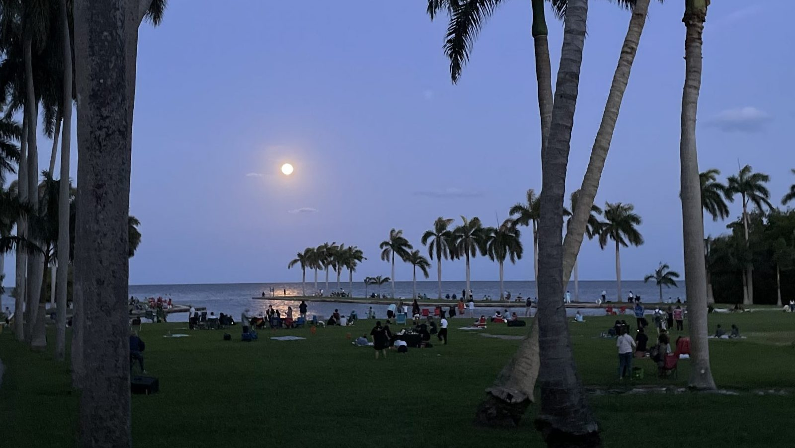 Crowd gathered on the main lawn of Deering Estate for Super Moon viewing